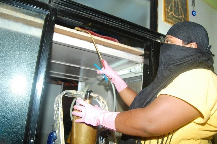 Glimpse about online pest control service