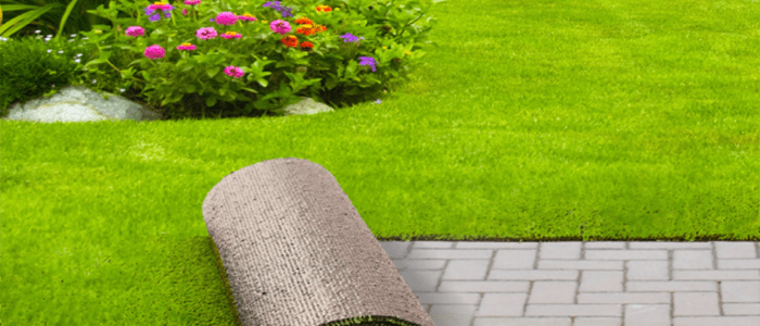 The Benefits of the Artificial Grass Carpet